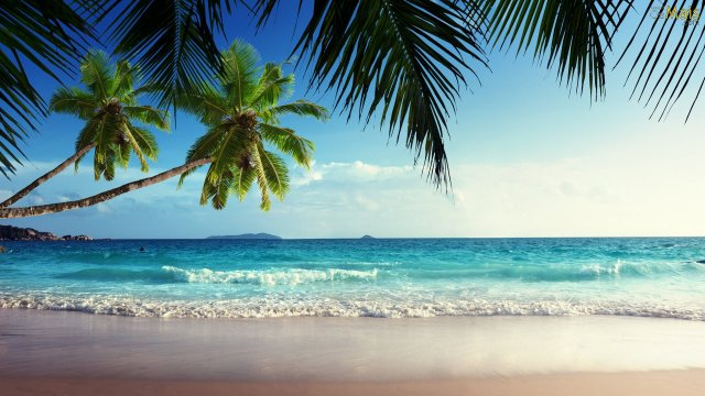 praia-tropical-deserta-wallpaper